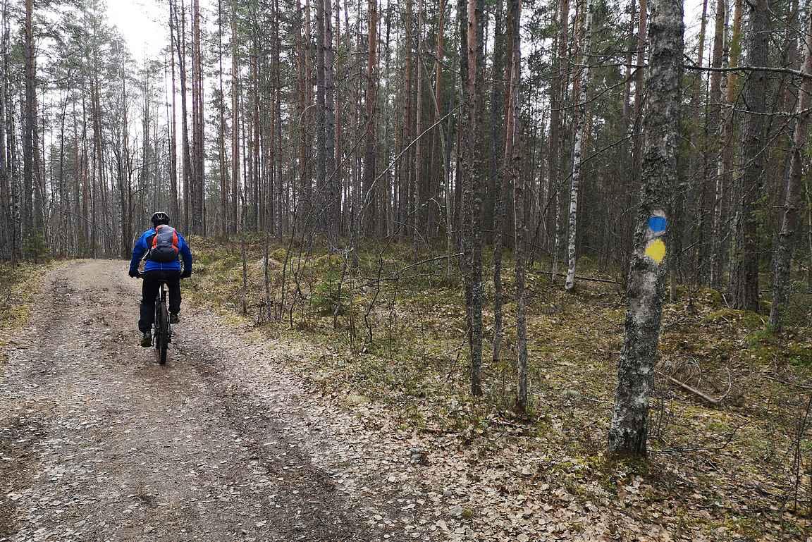 Fatbikeja on myös vuokrattavana kansallispuiston yhteistyökumppaneilta, joten välttämättä ei tarvitse omistaa omaa maastopyörää.