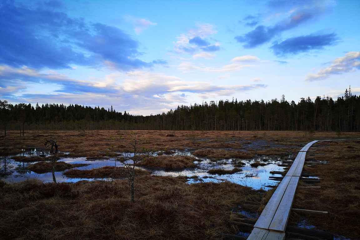 Näihin kuviin, näihin tunnelmiin päättyy retki Kotajärvenpolulla.