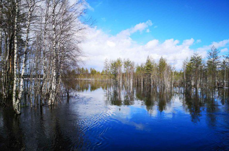 Vedet olivatkin talven jäljeltä vielä todella korkealla.