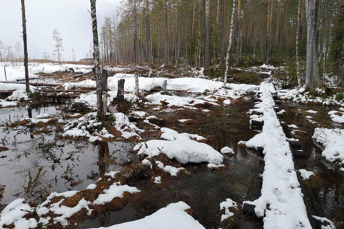Pitkospuuosuudet olivat paikka paikoin vielä lumen peitossa.