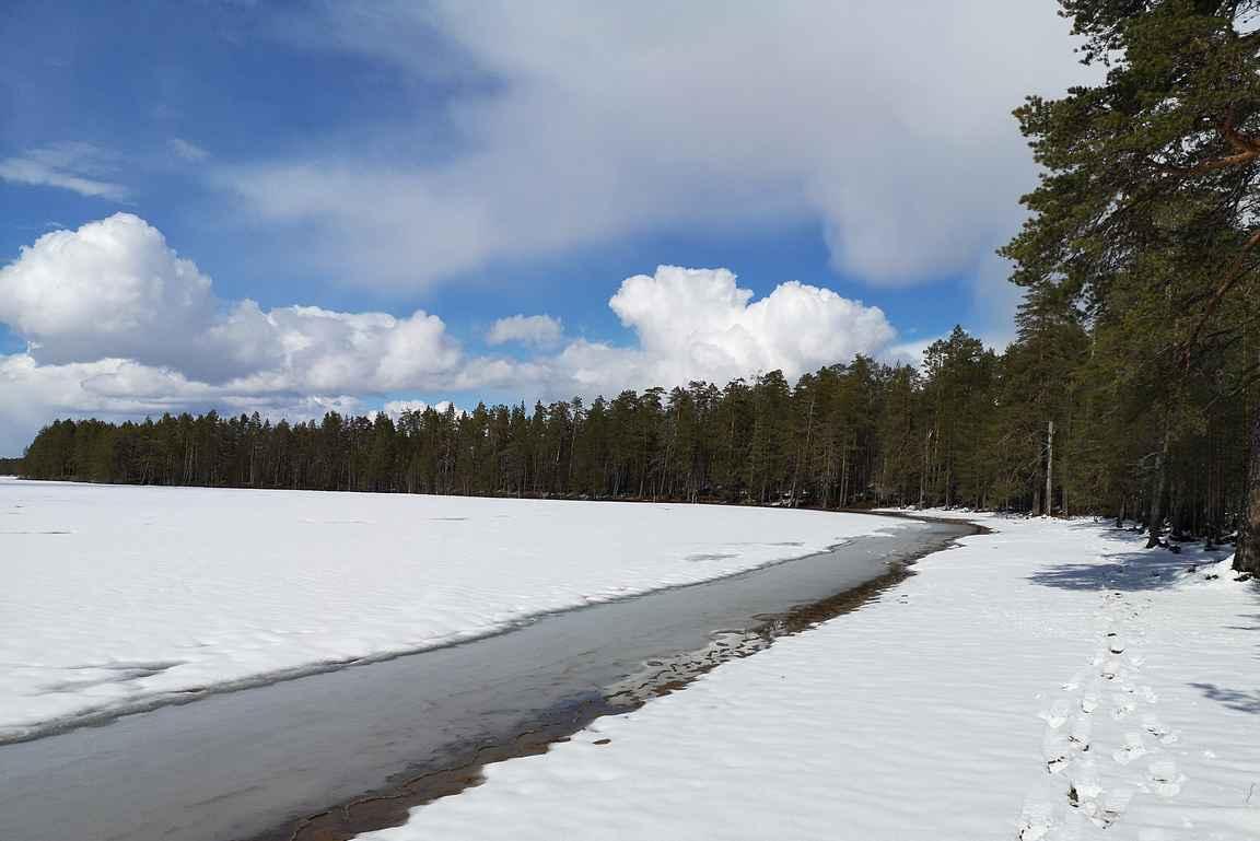 Pohjois-Savon parhaaksi tituleerattu uimaranta ei suoranaisesti houkuttanut uimaan.