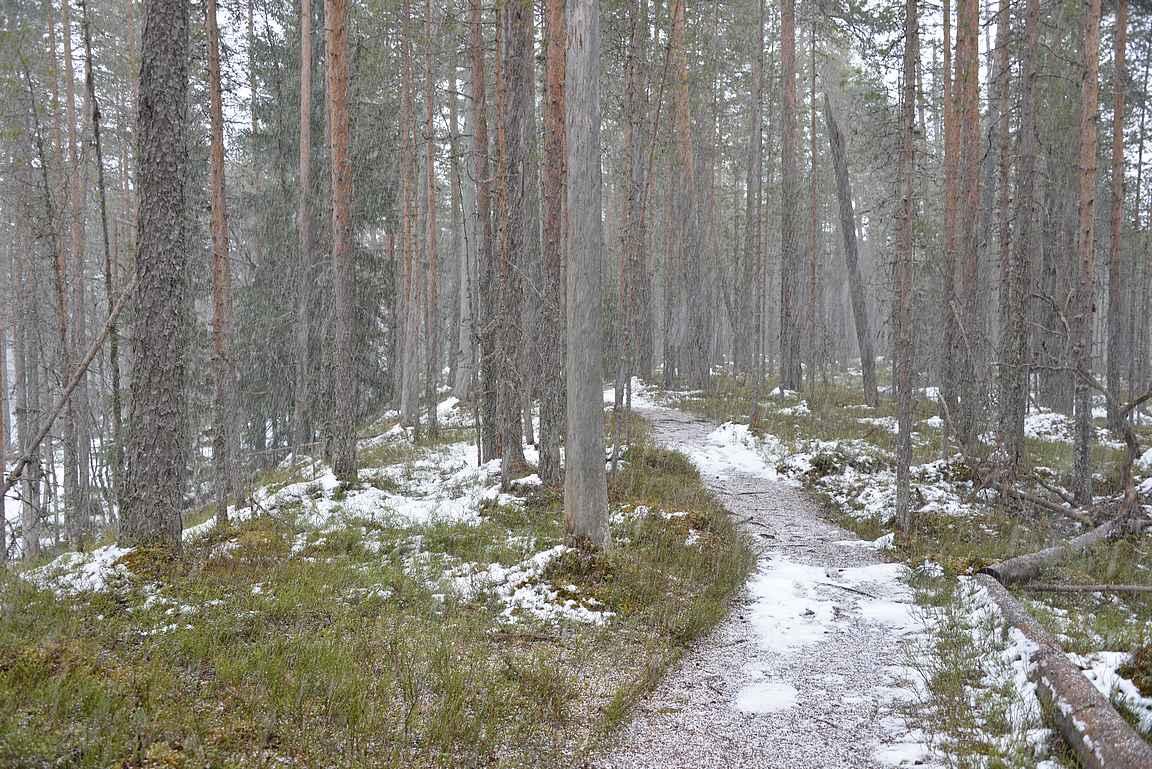Paluumatka Kalmoniemestä alkoi lumisateessa.