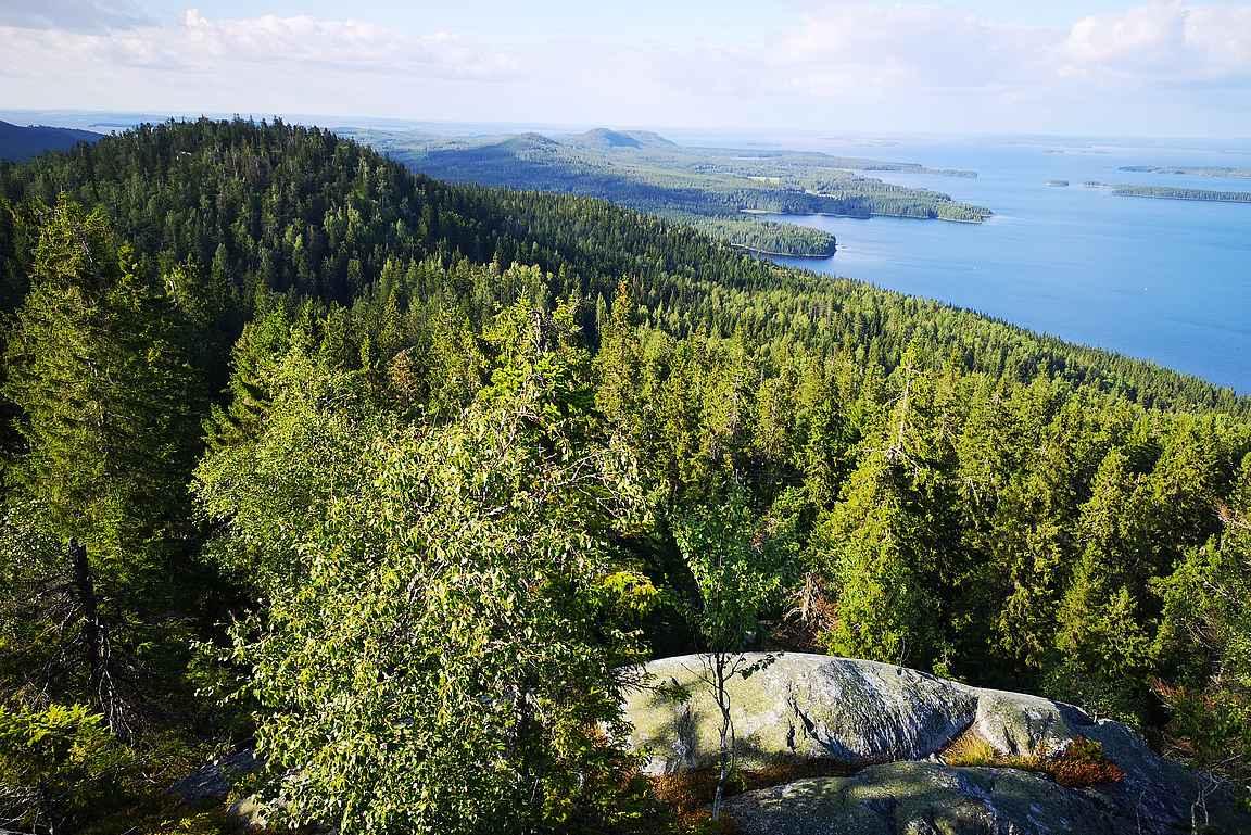 Ennen Ukko-Kolia olevalla kalliolla saa maisemia ihailla rauhassa.