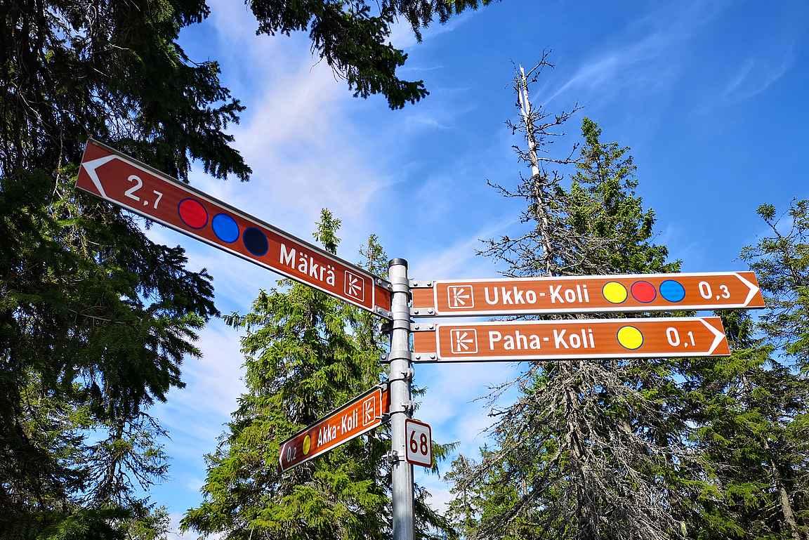 Break Sokos Hotel Kolin ja Luontokeskus Ukon vierestä lähtee tunnetuimmat Kolin kansallispuiston reitit.
