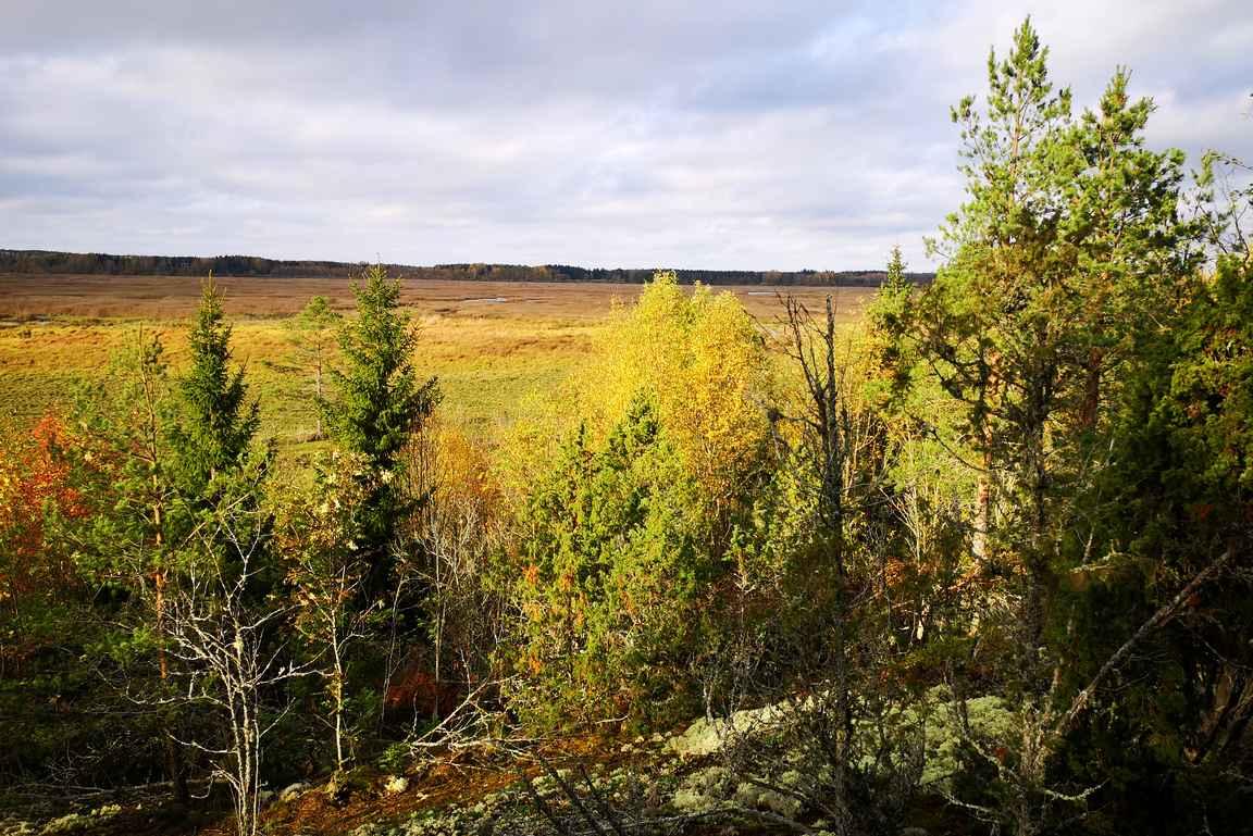 Syksyn ruskan väreissä maisema oli varsin mukava.