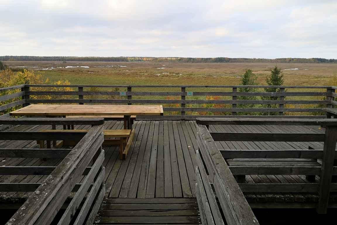 Mikäli haluaa Puurijärvellä nauttia evästauon, niin lintujen tarkkailulavan yhteydessä on siihen sopiva retkipöytä.