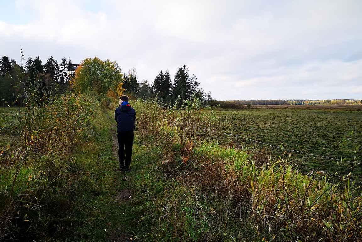 Maisema muistuttaa enemmän pelto- kuin järvimaisemaa.