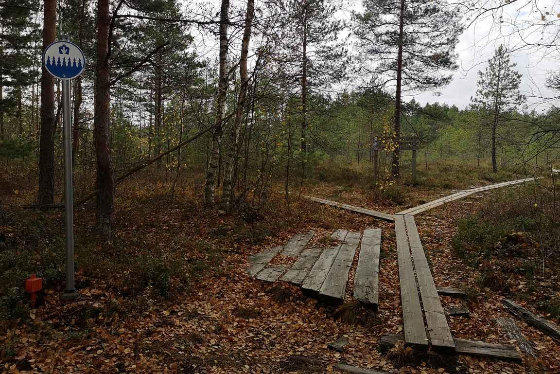 Isosuon luontopolku on kaksi kilometriä pitkä rengasreitti.