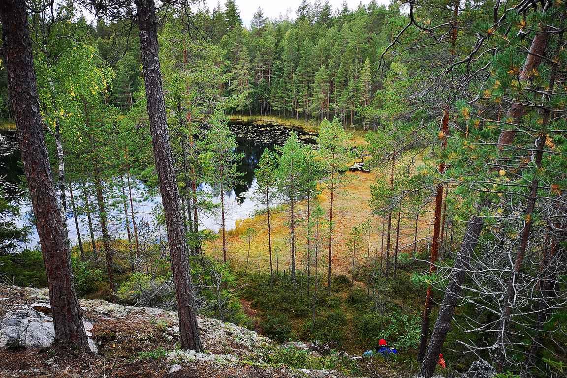 Kintulammi oli vuoden 2020 retkikohde Suomessa.