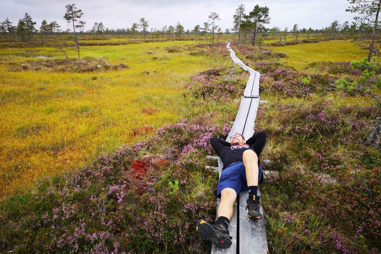 Kauhanevan-Pohjankankaan kansallispuisto - reittejä kahdella alueella
