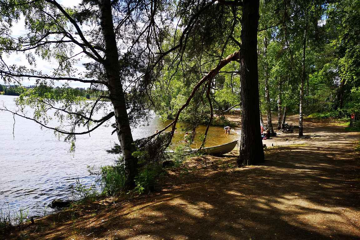Viikinsaaren luontopolulla kuljetaan Pyhäjärven rantamaisemissa...