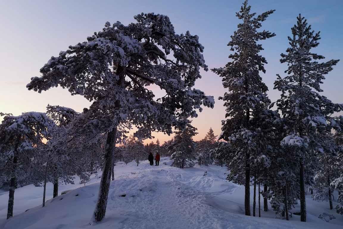 Talvinen paratiisi odottaa Ounasvaaralla majoittautujaa.