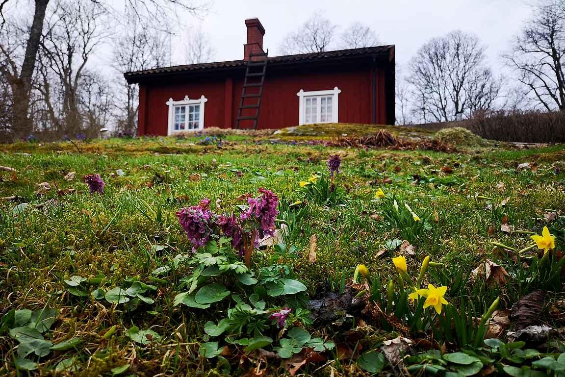 Fagervikin ruukin työlaisten viehättäviä asuinrakennuksia.