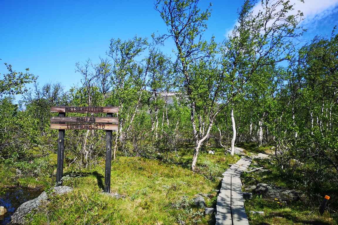 Mallan luonnonpuistoon vie lyhyet pitkospuut ja loppuretki rajapyykkiä lukuun ottamatta patikoidaan Suomen puolella.