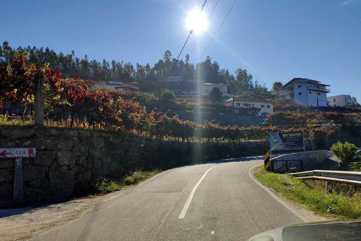 Dourojoen laakson jyrkänteillä viiniviljelmät on pengerretty kerroksiin.