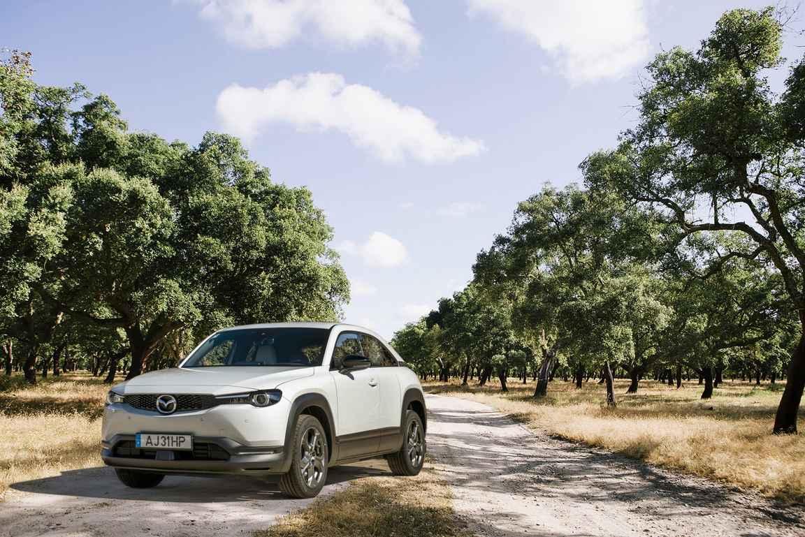Viininviljelyyn liittyy oleellisesti myös korkkipuut, joista valmistetaan korkit pulloihin. Tiesitkö, että Portugali tuottaa puolet maailman korkista? copyright Mazda