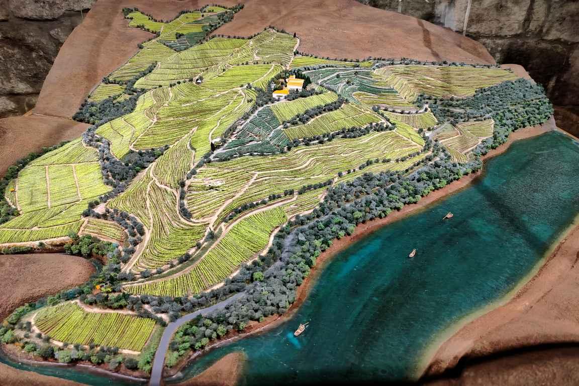 Quinta do Seixo - valtavat viinialueet Dourojoen rinteillä.
